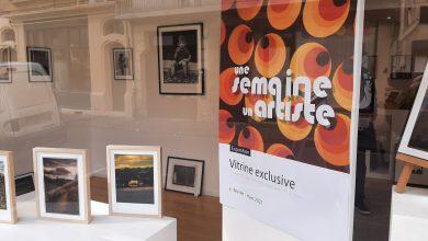 Photo de Un artiste par semaine, le pari de la Galerie de Corinne  Bertholino à Bergerac